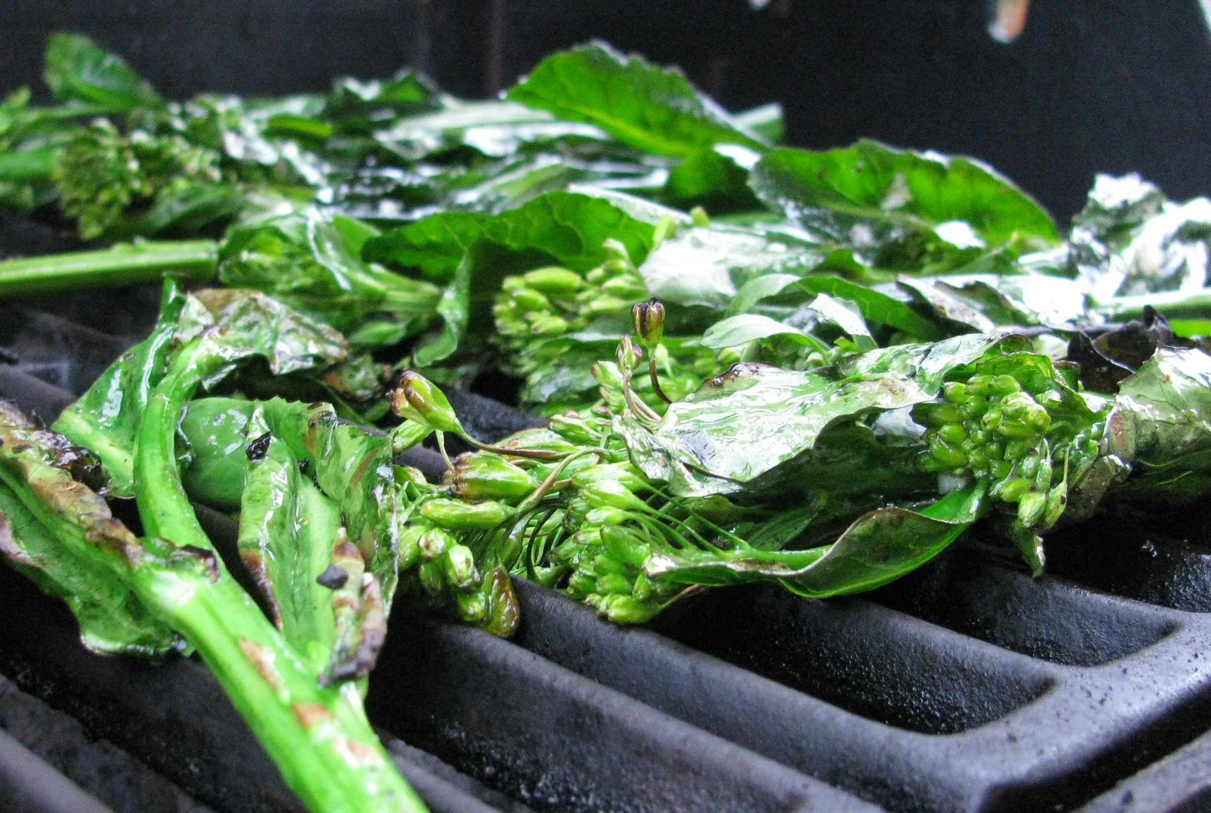 Grilled Broccoli Rabe. | The Root Cellar's Garden